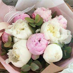 سلام به دوستای گل و بی معرفتم که فراموشم کردن...ظهر جمعتون بخیر ^____^