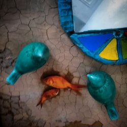 به یاد شهدای غواص!  ماهی ها دست بسته هم که باشند در خاک نمیمیرند پرنده میشوند! تاریخ را پرواز میکنند تصویری میشوند... با لباسهای غواصی ... آسمانی می شوند به رنگ دریاها...