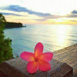 خدایا تو میدانی آنچه را که من نمیدانم.... در دانستن تو آرامشی است و در ندانستن من تلاطمها.... تو خود با آرامشت تلاطمم را آرام ساز . . .