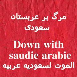 خدا یا. خواهش میکنم سقوط ال سعود را به دست شعیان قرار بده