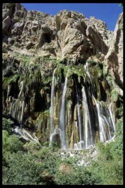 شیراز.ابشاردشت ارژن