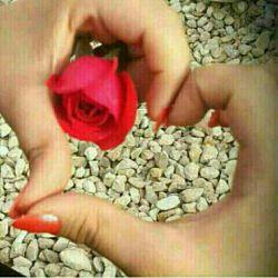 امروز روز تولد عشقمه ....عشقم تولدت مبارک ..