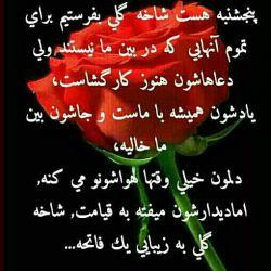 خدا رفتگان همه رو بیامرزه. فاتحه و صلوات رو امروز فراموش نکید برای عزیزان از دست رفته همه مون