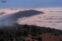 استان گلستان . شهر کردکوی . ارتفاعات روستای درازنو