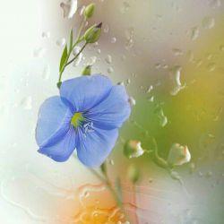 """یک همیشه یک است. شاید در تمام عمرش نتوانسته بیش از یک باشد.  امابعضی اوقات می تواند خیلی باشد:  یک دنیا ،  یک سرنوشت ،  یک خاطره ،  یک عشق پاک،  و یا """" یک دوست خوب مثل تو """""""