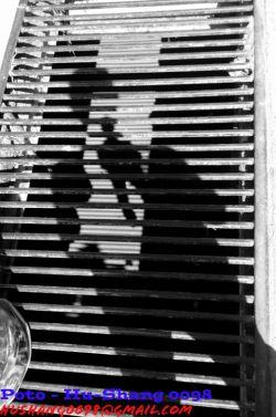 امروز روی نرده ها سایه مو دیدم و اون پایینم هم سایم بود ... گرفتن این عکس به زهنم رسید