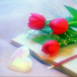 عشق فراموش کردن نیست، بخشیدن است گوش کردن نیست، درک کردن است دیدن نیست، احساس کردن است جا زدن و کنار کشیدن نیست، صبر کردن و ادامه دادن است حتی تنها  . . .