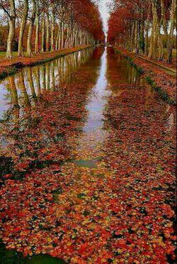 می خواهم این #پاییز پیدایش کنم اما  می ترسم او در زیر چتر دیگران باشد...   استاد فرامرز عامری