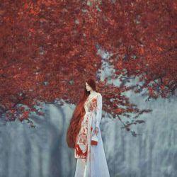 پاییز شاید زنی ست  ؛  با پیراهن ِ راه راه  نارنجی که دامن ِ زردش را کمی بالا گرفته  و پابرهنه و آرام از لابه لای شهر  رد که نه ... آواز می شود  کافی ست صدای خاطره ای را کمی بلند کنی و از پشت پنجره  قد و بالایش را نگاه جان خودم مثل چنارها عاشقش می شوی . . #حمید_جدیدی