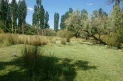 طبیعت شهرستان جیرفت(ساردوئیه_روستای نصیرآباد)