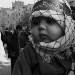 عکس شماره 1 عکاس اقای ناصر عبدزاده