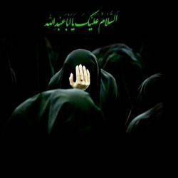 السلام علیک یا ابا عبدالله الحسین...
