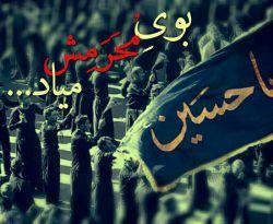 السلام علی الحسین وعلی علی ابن الحسین وعلی اولاد الحسین وعلی اصحاب الحسین...التماس دعا