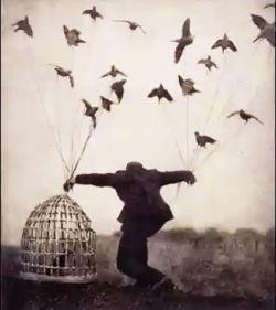 """پرواز را علامت ممنوع زدند برما عقابان پیر و خرفت، اما پرواز رسم ماست نه خفتنی درقفس، بوسه ای میزنیم برهوس، ستیغ کوه را میکشیم چون نفس، برکف آسمان میکنیم پرواز را همچون رقص، لب مرگ را بوسه میزنیم ازاین پس، آزادزندگی کردیم وآزاد خواهیم مُرد باشد همین حس آزادبودن مارابس...  """"توماج"""""""