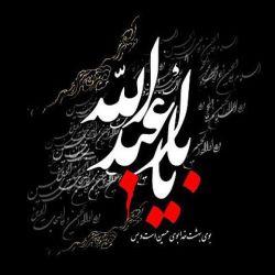 یا ابا عبدالله الحسین ....