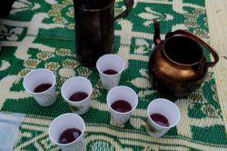چای جنگلی، خون کفتری. حیف استکانش کرستال نبود.