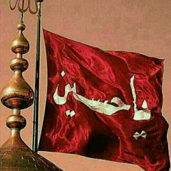 لطفا هرکس دلش امام حسینیه عکس پروفایلش رو حداقل در این دهه محرم کربلایی کنه.یا حق