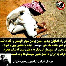 این هم از طعام وتفریحات سعودی های نجس...هههه اینا ادعا دارن واسه ایران الموت ال سعود