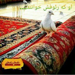 سلام بر امام مهربان....دلم برایت لک زده ...
