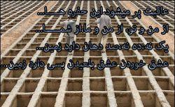 خاک شود هر که در این خاک زیست* خاک چه داند که در این خاک کیست