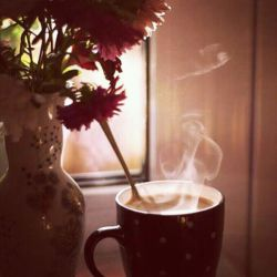 """کنارِ بُهتِ یک پنجره می مانی  بو می کشی  گل های باغچه سنجاق سینه می شوند  خیره به یک استکان چای داغ  شعر که خودش می آید  می چکد روی خیالِ بوم  می رود زیر غبار پنجره  خواب می شود - """" باز که داری گیج می زنی  بیا چایی ات را  عوض کنم"""""""