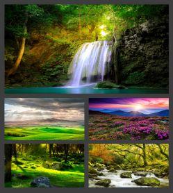 دانلود این آلبوم شامل صد عکس با کیفیت 8k  در سایت http://bellfile.sellfile.ir