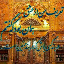 السلام علیک یاثارالله وبن ثاره...