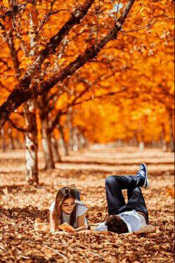 تو نیستی و پاییز  از چشمهای مرد عاشقی  شروع شده است که تمام درختان را گریسته است در سوگ رفتنت. برنگرد، که بر نمی گردی تو هیچوقت نمی خواهمم داشته باشمت،نترس فقط بیا در خزان خواسته هام کمی قدم بزن  تا ببینمت دلم برای راه رفتنت تنگ شده است...