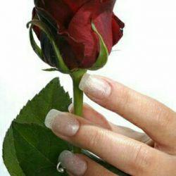 سلام شب شمادوستان عزیز لنزوری بخیر وشادی وسلامتی وعاقبت بخیری این گل زیبا تقدیم تک تک شما عزیزان.....