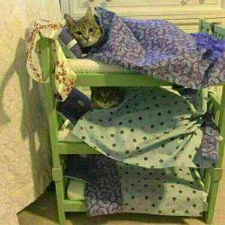 خوابگاه سربازی......