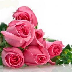 این گل تقدیم به محمد فقط فقط به همه هم  میگم ب+د+و+ن+ی+د