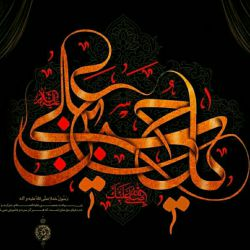 السلام یا ابا عبد الله