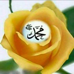 صلوات بر محمد وال محمد