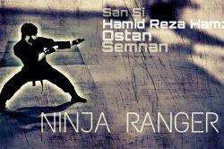 #ninja #viper