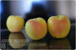 سیب ، سلامتی ، تقدیم / عکس از امین مداحیان ، عابــــــــــر مسلح