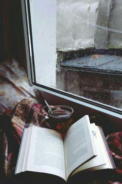 چه عجب لای ما رو هم وا کردی...:|    گفتگوی من و کتابم همین الان یهویی :D