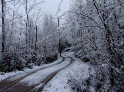 گیلان-شهرستان صومعه سرا-روستای تطف-زمستان 89 عکس : بهرام حاجی زاده
