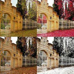 چهار فصل شیراز، باغ ارم