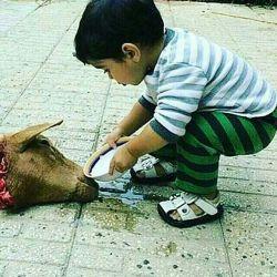 کاش تو دنیای هزار رنگ ظالم بچه بزرگ نمیشدم، #دل مهربون این بچه چندتا لایک داره