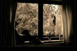 گاهی خدا برایت همه پنجره ها رامیبندد وهمه درها را قفل میکند زیباست اگر فکرکنی ان بیرون هوا طوفانیست  وخدا در حال مراقبت از توست
