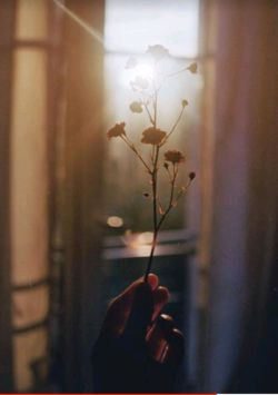 تو را خودم چشم زدم ..!  بس که نوشتمت میان شعرهام ،  بی آنکه اسفنـد بچرخانم دور واژه ها ... .  تو را خودم چـشم زدم ..  می دانم ....  | کامران رسول زاده |