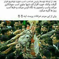 حالم بهم میخوره از مردم خرافاتی ایران...