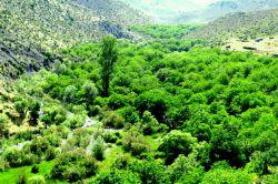جیرفت،طبیعت منطقه حفاظت شده بحرآسمان ساردوئیه