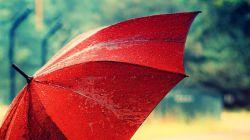 وقتی چترت خداست بگذار ابر سرنوشت هر چقدر میخواهد ببارد... وقتی دلت با خداست بگذار هر کس میخواهد دلت را بشکند...