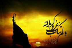 خوش به حال اونایی که مسافر حرم آقان... التماس دعای مخصوص ^-^
