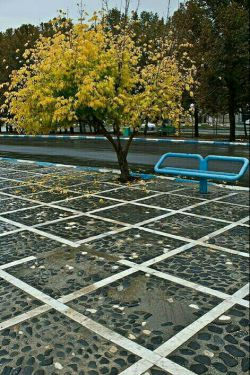 پاییز ملایر
