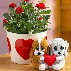 لوییس تو هم دلت گرفته !   مثل تموم عالم ...  =========  تنهایی را دوست دارم، به شرط آنکه هر از گاهی دوستی بیاید تا درباره آن با هم گپ بزنیم.
