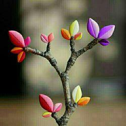 گاهی وقتا فراموش کن کجایی، به کجا رسیدی و به کجا نرسیدی گاهی وقتا فقط زندگی کن، یاد قولهایی که به خودت دادی نباش، یه وقتایی شرمنده خودت نباش،تقصیر تو نیست! تلاشتو کردی اما نشده...یه وقتایی جواب خودتو نده هر كى پرسید: چرا گیر کردی لبخند بزن و بگو: کم نزاشتم اما… نشد! یه وقتایی فقط از زنده بودنت لذت ببر... از بودن کنار کسانی که دوستشان داری و دوستت دارن... از طلوع خورشید، از باد، باران، از همه چیز لذت ببر تو مسافر زمانی ... ! قدر لحظه ها را داشته باش....