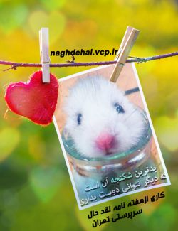 برگرفته از http://naghdehal.vcp.ir/