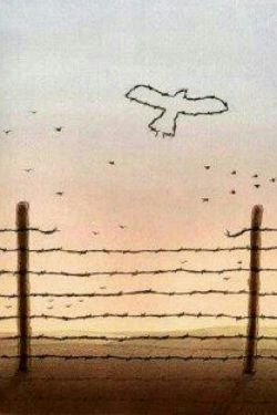 آزادی نه دادنی است نه گرفتنی بلکه آموختنی است،برای همین است که خیلی ها از آن گریزانند،چون یادگرفتن برایشان مشکل است.